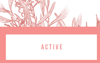 BODY | SHOP ACTIVE